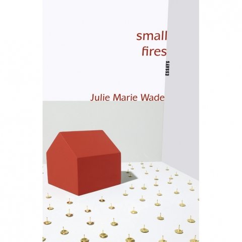 2009: Small Fires